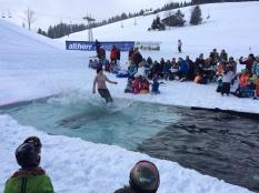 Splash Contest 2015